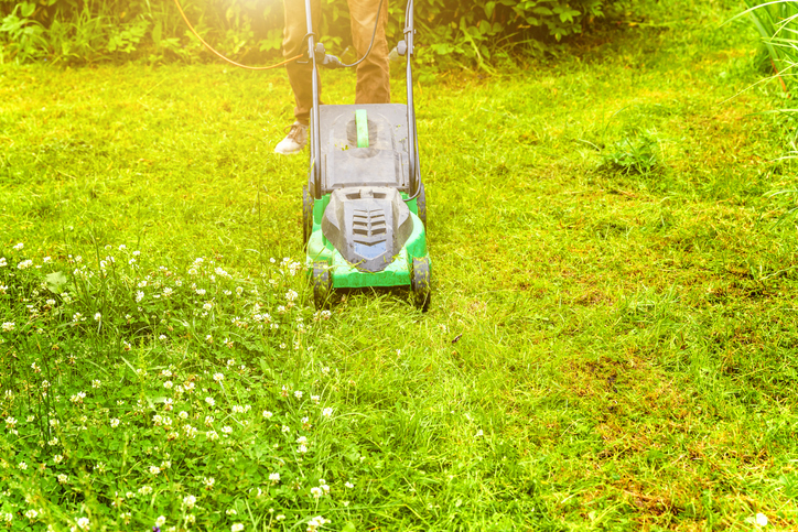 Electrify, Simplify Your Lawn Care Routine